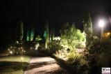 Beleuchtung Parkwege Botanische Nacht Botanischer Garten Museum Sommernacht Berlin Dahlem Steglitz karibische Sommernacht Berichterstatter