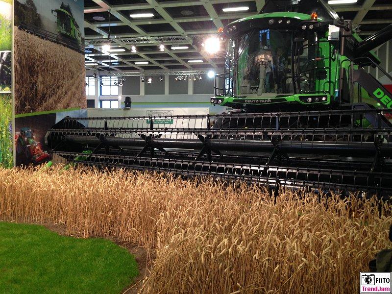 Getreideernte in der Halle Gruene Woche Berlin 2015
