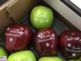 Logo auf Obst mit Lebensmittelfarbstoff Fruit Logistica Messe Gelaende Berlin unter dem Funkturm Berichterstatter