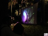 Rekursion Wald Licht Nebel Botanische Nacht Illumination Berlin Dahlem Botanischer Garten Steglitz Zehlendorf
