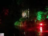 See Wald Licht Nebel Botanische Nacht Illumination Berlin Dahlem Botanischer Garten Steglitz Zehlendorf