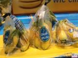 Trend mini mini Bananen Chiquita ® FRUIT LOGISITICA Messe Berlin Funkturm