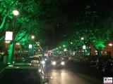 beleuchtete Bäume Berlin leuchtet Lichterfest Potsdamer Platz