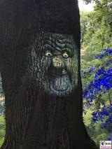 sprechender Baum Animation Botanische Nacht Berlin Dahlem Botanischer Garten Magische Natur Welten Berichterstatter